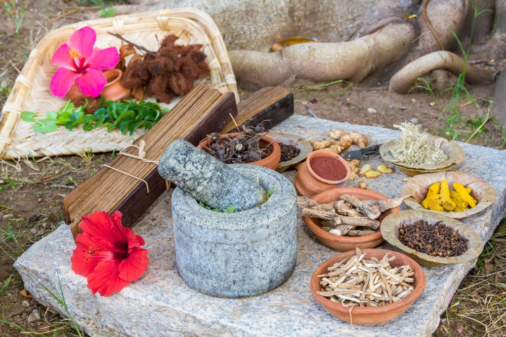 52741335 - a traditional ayurvedic apothecary with stone mortar and pestle, herbs and spices.